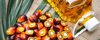 Palm Oil Prices To Keep Rising In First Half Of 2021 On Tight Supply: Council Of Palm Oil Producing Countries (CPOPC)